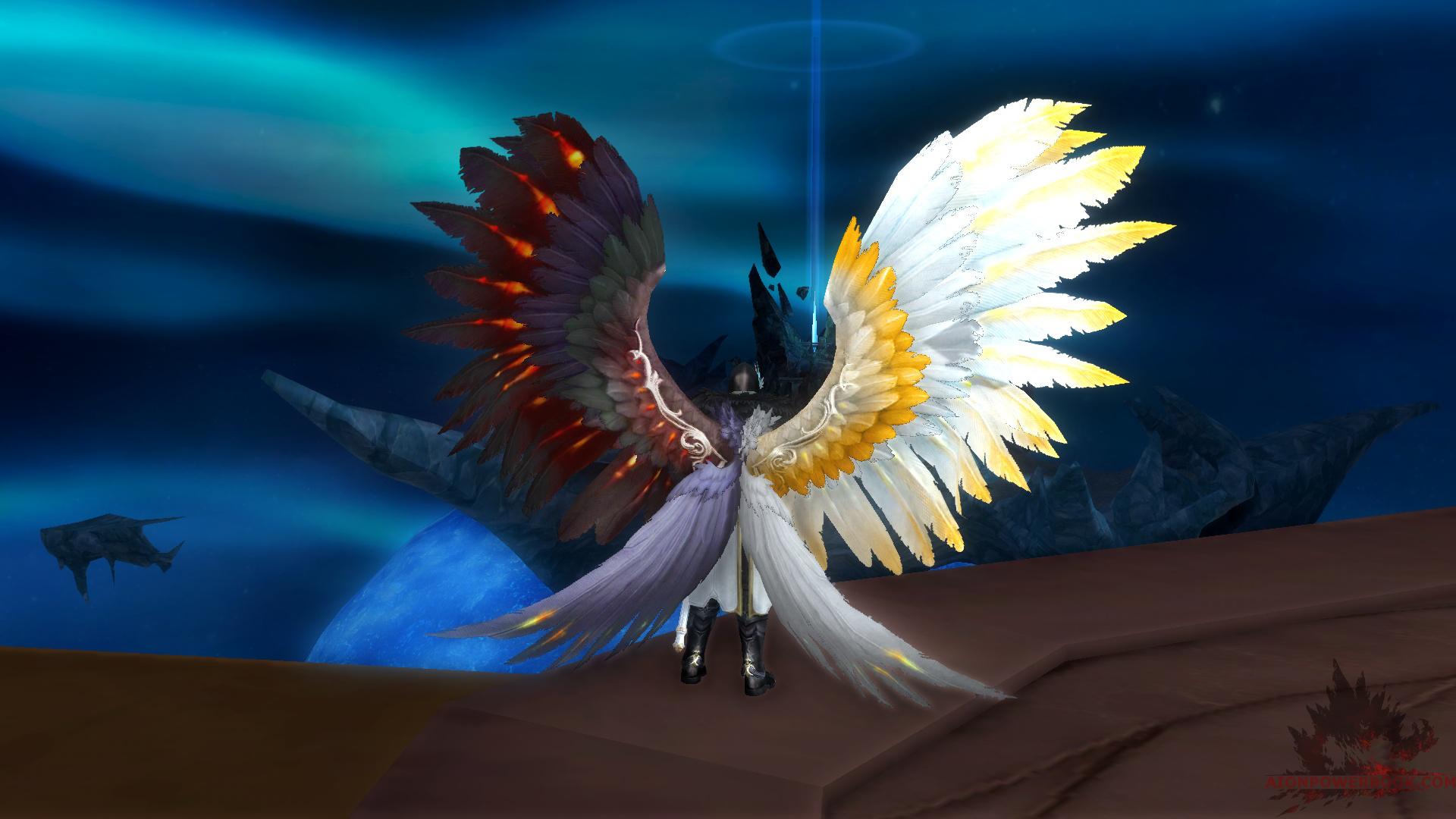 wing_cash_mono_01_2.jpg&key=c6109a5644ec