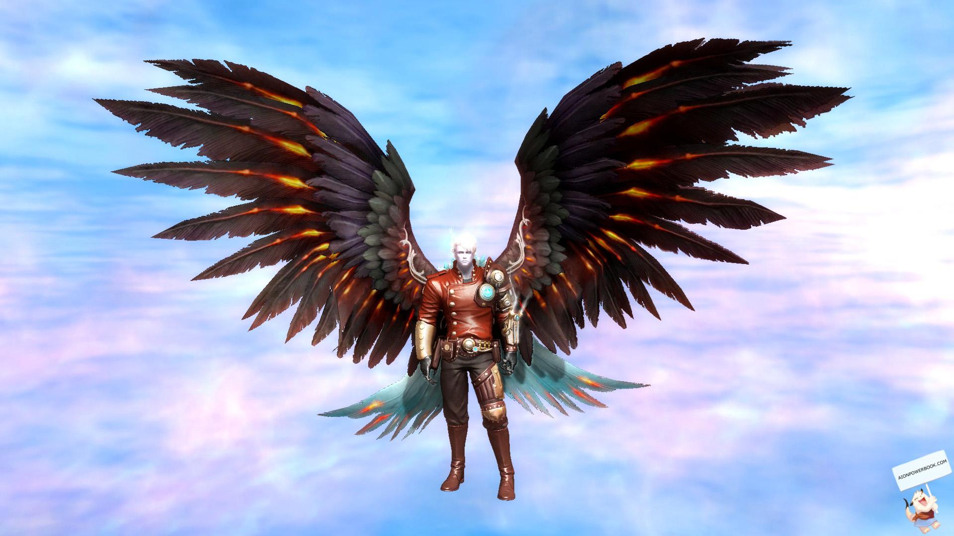 wingshop_60a_1.jpg